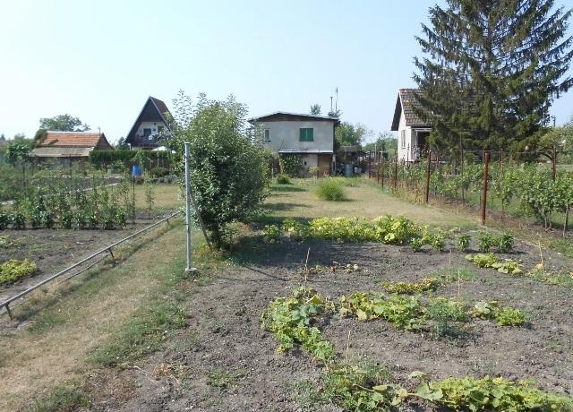 Prodej zahrady 580 m², Břeclav, Na Širokých