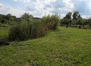Prodej zahrady 1 653 m², Břeclav, U letiště