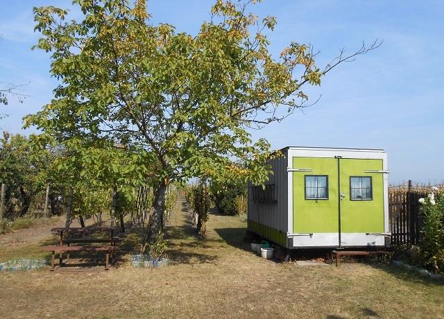 Prodej zahrady 588 m², Břeclav, U letiště