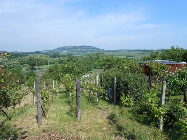 Vinohrad, spodní část zprava