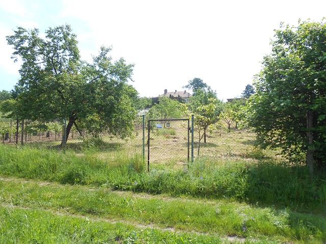 Spodní část zahrady s brankou