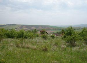 Prodej pozemku 3 032 m², Násedlovice