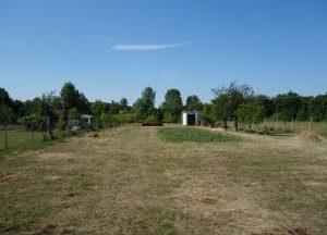 Prodej 6 zahrad cca 500 m², Břeclav, U letiště