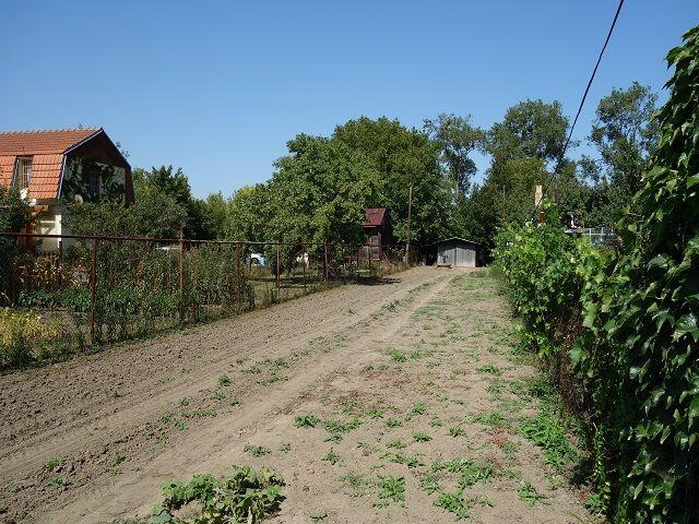 Střední část zahrady zprava